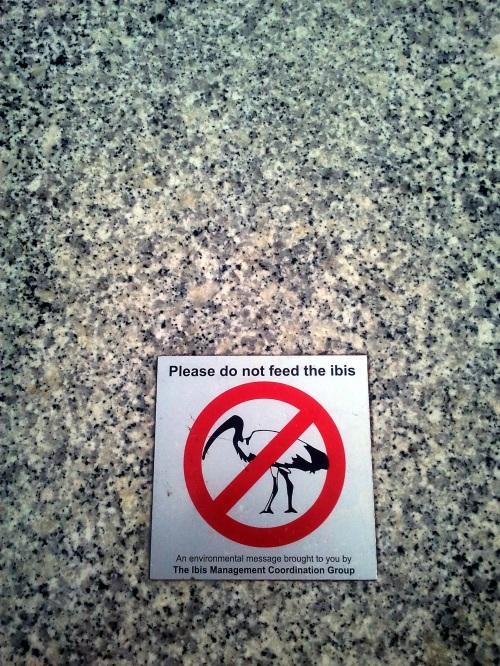 Public Notice, Brisbane